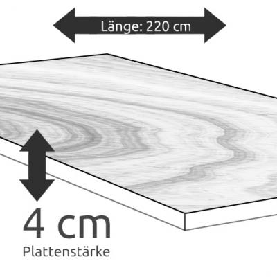 Tischplatte Eiche Länge 220 x Breite 100 cm / Stärke 4 cm