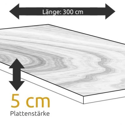 Tischplatte Eiche Länge 300 x Breite 100 cm / Stärke 5 cm